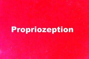 Propriozeption