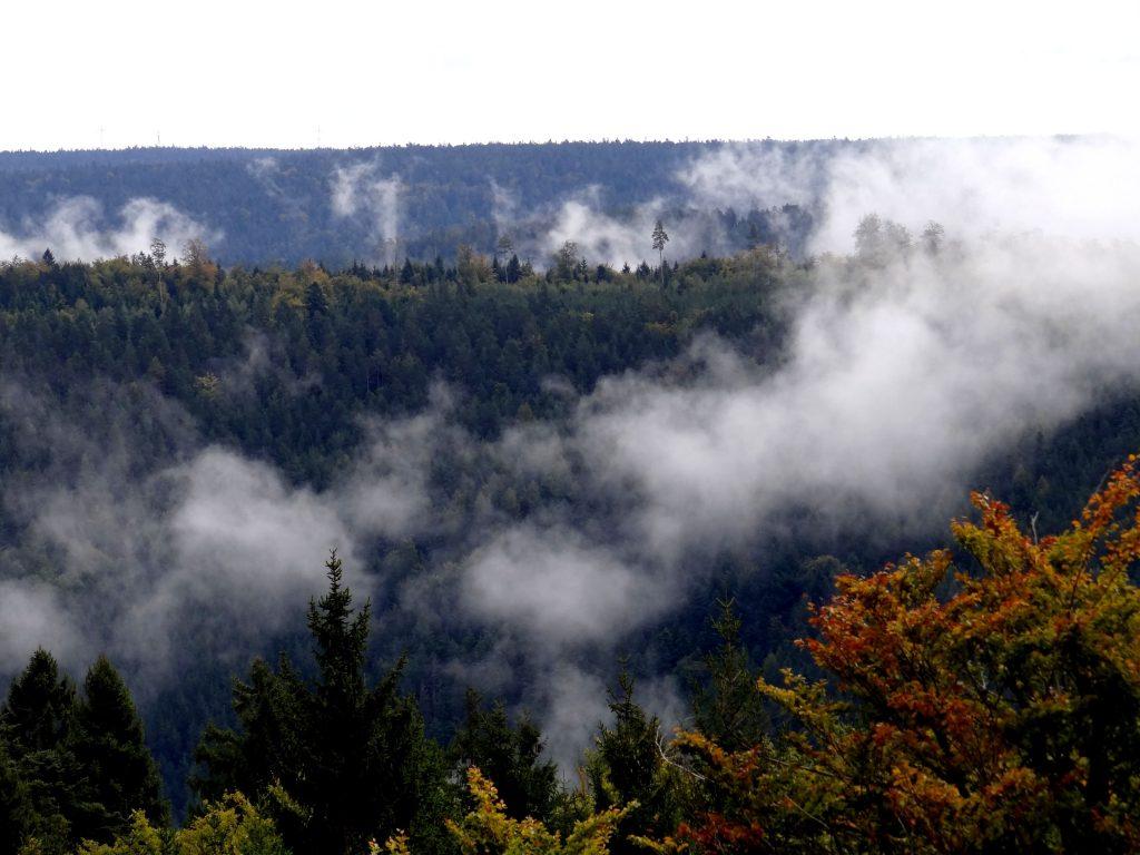 Bad Wildbad Sicht