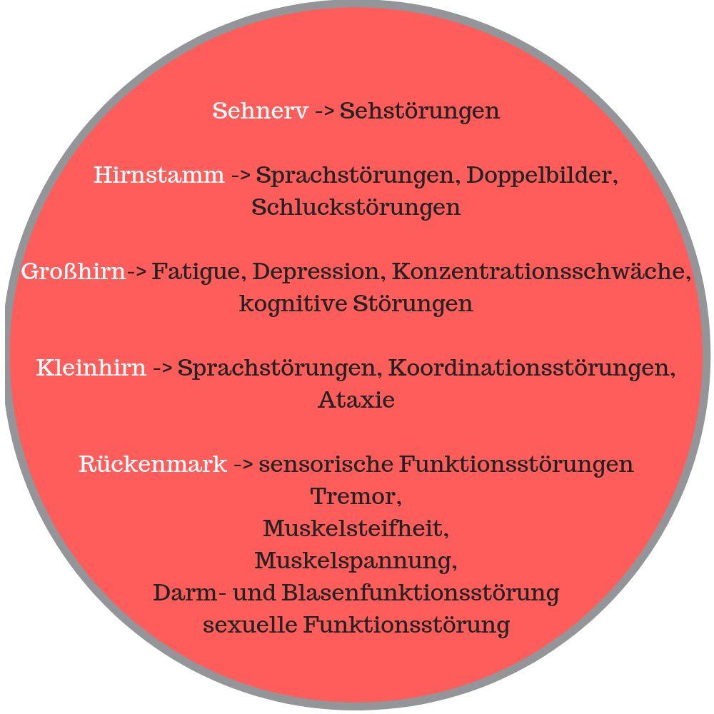 Schub_Pseudoschub_meine_MS