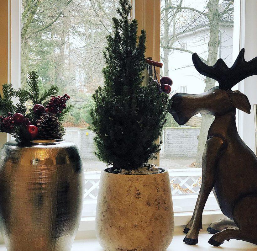 Weihnachtsdeko auf die Schnelle